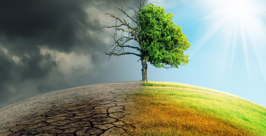 eradication of hunger and climate change